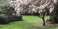 PLANRAT-VENNE-Friedhofsplanung_Modul-13.4