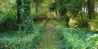 PLANRAT-VENNE-Friedhofsplanung_Modul-5