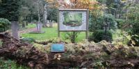 PLANRAT-VENNE-Friedhofsplanung_Modul-5.3