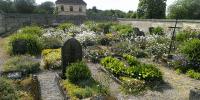PLANRAT-VENNE-Friedhofsplanung_Modul-6